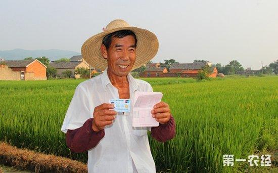东莞水稻种植补贴大幅提升 2018年每亩每造补贴250元