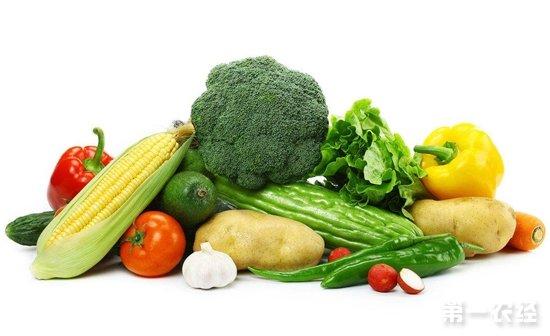 全国各地蔬菜市场价格持续走跌