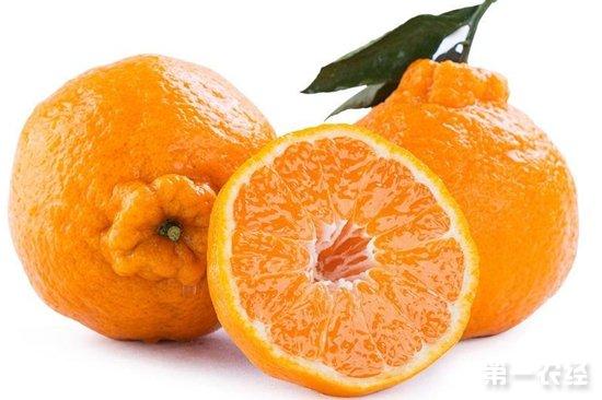 江苏春季水果大量上市 价格亲民与去年基本持平