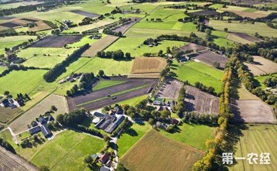 """荷兰农场出现禽流感疫情   近20家农场被下达""""封锁令"""""""