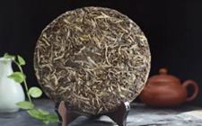 普洱茶青饼究竟存放几年才好喝?