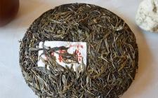 头春茶与二春茶有什么区别?