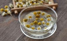 菊花茶有什么副作用?菊花茶的副作用有哪些?