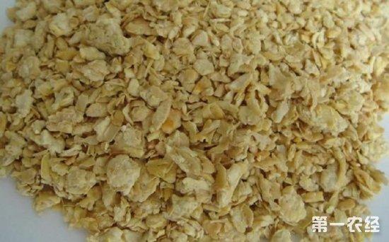 豆粕价格行情如何?急跌后能否再上涨?
