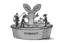 各级党委、政府十分重视发展壮大农村集体经济