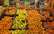 <b>秘鲁桔子及其杂交种出口量创新纪录 对华出口量增幅最高</b>