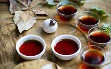 喝普洱茶会上火吗?喝普洱茶容易上火吗?