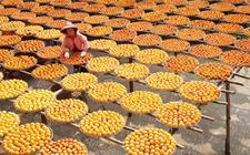 农业部积极部署农产品加工业提升行动优化产业结构布局