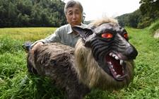 为保护农田免遭毁坏日本企业将推出机器狼