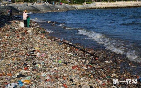 全球海洋垃圾问题严重 漂浮塑料垃圾约5万亿件