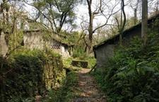 <b>重庆这个300年的古村落将启动修缮复原</b>