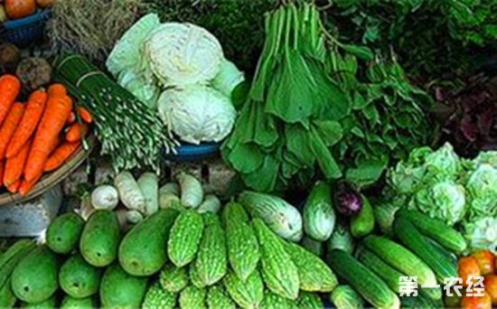 """河南省南阳市蔬菜价格重回""""一元时代"""""""