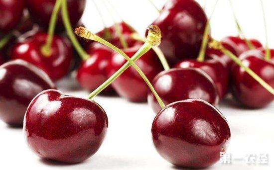 """进口樱桃售价""""走下坡路"""" 比国产大樱桃还要便宜"""
