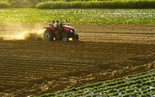 """<b>农业部:倡导""""亲土种植""""新理念 提升耕地质量保护促发展</b>"""