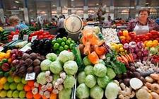 美国果蔬进口已成趋势 至2027年农产品进口将增加45%