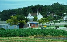 韩国出台系列政策措施助推和保障乡村旅游顺利进行