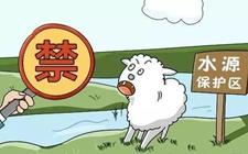 """山东:禽畜养殖禁止""""一刀切"""" """"疏堵结合""""化解污染问题"""