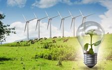 生态农业:未来农业生产中可持续发展的明智选择