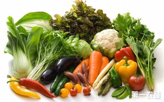 常州当地时令蔬菜大量上市 蔬菜价格持续回落