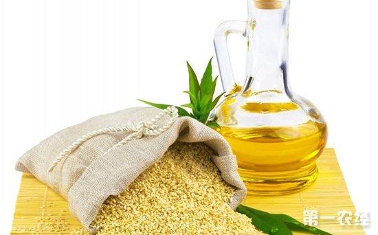 山东济南本周粮油市场价格行情监测