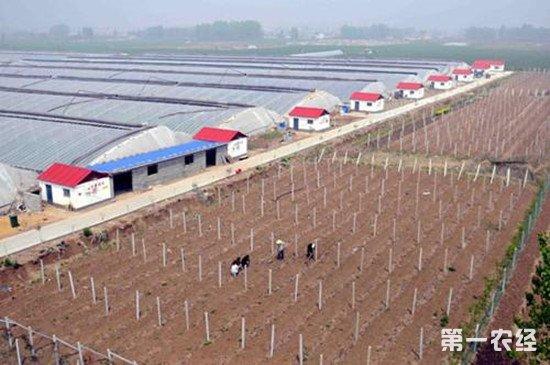 农村集体产业建设