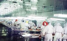 泰国首批7家符合资质禽肉企业恢复对华出口