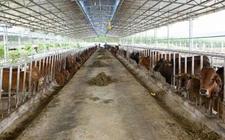 环保部:2018年这几类养殖企业将被淘汰!