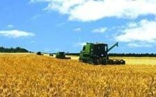 农业托管服务——今后农业生产的未来