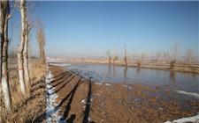 内蒙古巴彦淖尔市提醒:防范潮塌对小麦播种进度造成影响