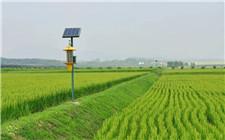 绿色防控显成效 安徽农药使用量3年连降