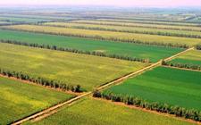 辽宁:推进现代农业生产基地建设 促进现代农业发展