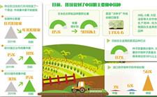 育种产业高速发展 我国做到了中国粮主要用中国种