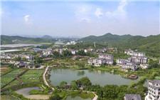 广西打造现代新型农村示范区