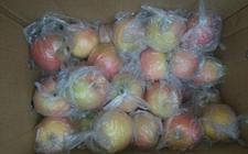 忧心忡忡!山西小伙200箱苹果跨省销售遇滞销