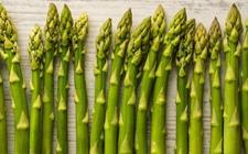 绿芦笋多少钱一斤?