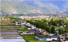 江苏:乡村振兴产业联盟在南京成立
