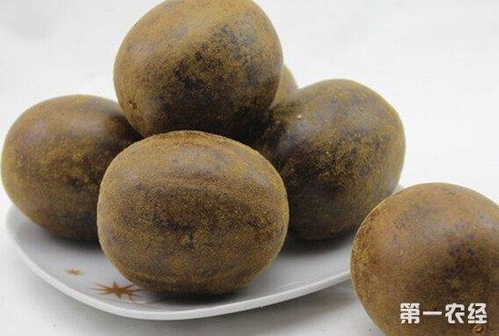 罗汉果常见品种有哪些?适合种植在哪?