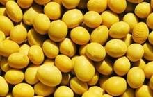 贸易战将开启!中国拟对美大豆等106项商品加征关税