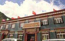 西藏脱贫攻坚战取得重大进展去年1705个贫困村实现脱贫