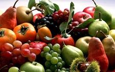 反季水果填补市场空白 促农增收提升经济价值