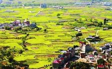 金华市财政投入8.55亿元打造美丽乡村升级版