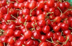 徐富军推动当地发展玛瑙红樱桃产业全村脱贫