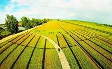<b>2018年国家农业补贴政策:休耕轮作补贴面积达3000万亩!</b>