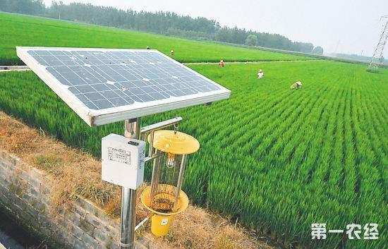 我国主要农作物绿色防控率达27.2% 什么是绿色防控?