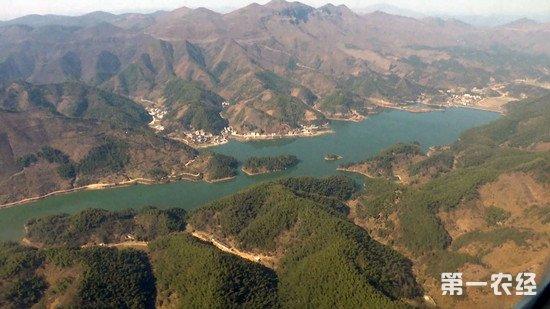 湖北:大力建设绿色生态廊 三年造林近千万亩