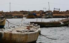 以色列3个月内施行加沙地带捕鱼区扩大三英里措施