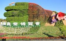 2018台湾桃园农业博览会规划六大主题深化环保理念