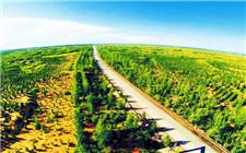 <b>河北:京津风沙源治理二期工程投入4.606亿元</b>