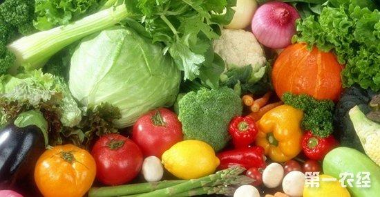 浙江金华供需不平衡部分蔬菜出现阶段性涨价