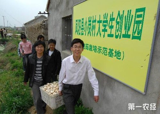 大学生农村创业 助力农村振兴图片